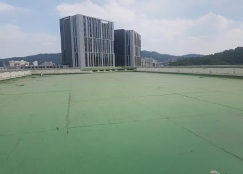 서울시, 20년간 축구장 45개 규모 옥상녹화… 올해도 23개 건물 그린오아시스로